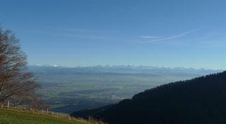 Traumhaftes Wetter mit Blick auf die Alpen