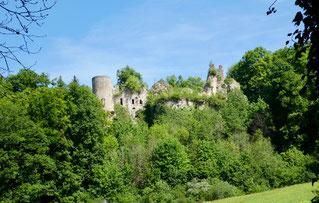 Ruine Morimont