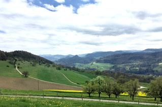 Blick von der Liesbergweid Richtung Bärschwil, in der Mitte der Stürmenkopf