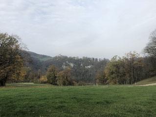 Blick von der Bergmatte zum Schloss Pfeffingen