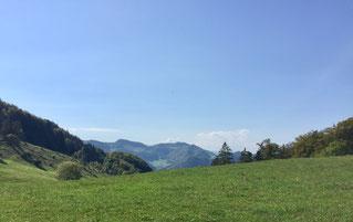 Blick vom Meltingen Berg Richtung Westen