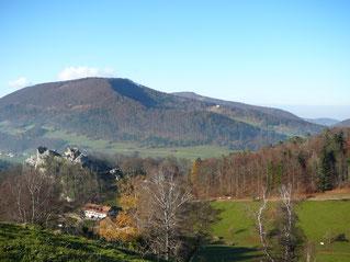 Burgruine Alt-Bechburg