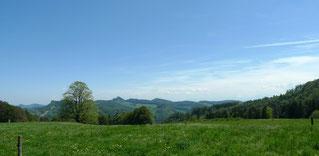 Blick von der Waldweid Richtung Bölchen