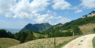 Blick vor dem Hinters Hofbergli Richtung Westen