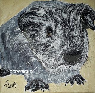 Meerschweinchenporträt, Acryl auf Leinwand, 20x20 cm