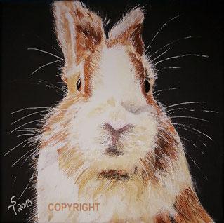 Kaninchenporträt eines rot-weissen Kaninchens. Es ist von vorne gemalt