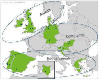 TRUE Regional Clusters