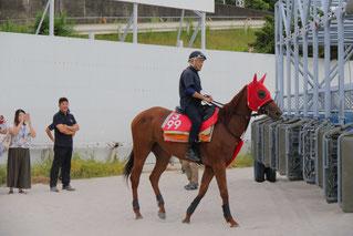 東川公則騎手によるゲート入り練習