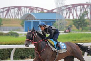 こちらは調教中の池田敏樹騎手
