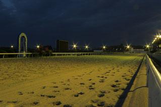 日の出前のコース。各馬が周回を重ねます
