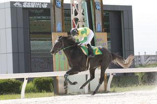 佐藤友則騎手とユーセイスラッガー号          (写真提供:愛知県競馬組合)