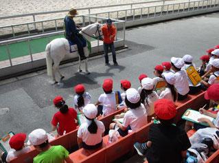 獣医の先生から馬の体の仕組みについて説明を聞きます。みんなもしっかりメモをとっています。