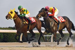 リネンマックス号と佐藤友則騎手(左側)