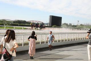 スギちゃん、笠松競馬場を翔る
