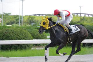 オロフィナアスール号(川嶋弘吉 厩舎)
