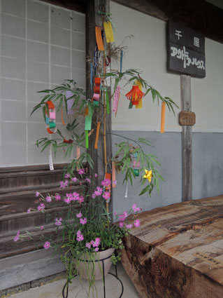 千屋アウトドアハウスの七夕飾りは、願い事が叶うと噂!