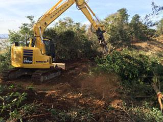 大型重機のハサミで森林伐採抜根