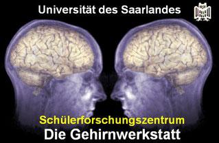 Schülerforschungszentrum Die Gehirnwerkstatt