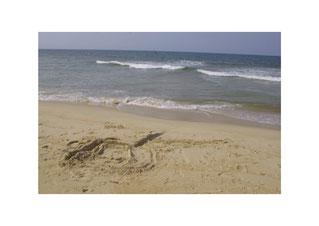 Château de sable au bord de la mer de Chine
