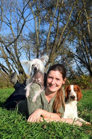 Sarah Unterberger Animal Train Chinesischer Schopfhund Welsh Springer Spaniel
