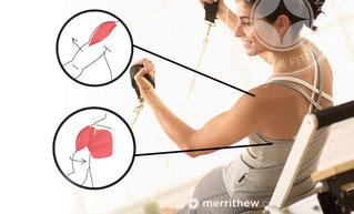 Formation Pilates Anatomie fonctionnelle