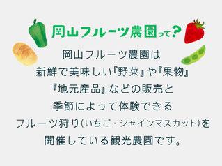 岡山フルーツ農園は新鮮で美味しい野菜や果物、地元産品などを販売しております。また、季節によって体験できるフルーツ狩り(いちご・シャインマスカット)も開催しております。