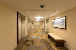 ホテルの様な、絨毯が引き詰められている廊下