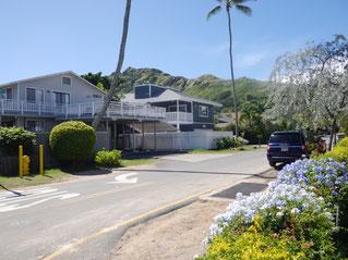 ハワイの、道路から一戸建て住宅を望む写真