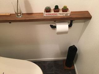 トイレに棚を創り、サボテン等の観葉植物を置いた