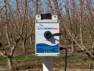 Enviroscan Solo installé dans un verger de pruniers - une sonde tout terrain vendue par Agralis