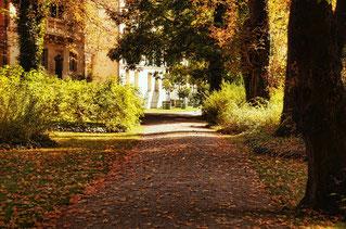 entretien des parcs et jardins avec Agralis, expert en irrigation