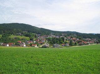 06/17: WT Böbrach im Bayr. Wald: Blick auf Böbrach