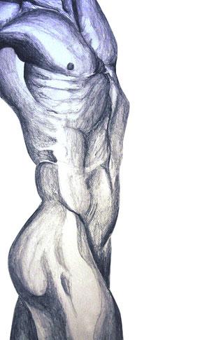 Zeichnung Akt männlich sportlich muskulös by artofpy