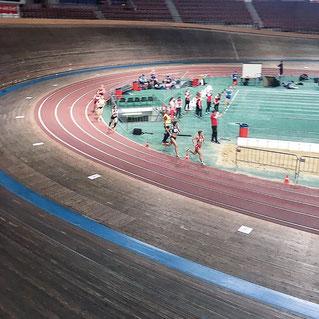 Julia Mayer Vizelandesmeisterin 800 Meter Halle Hallenmeisterschaften Dusika Stadion