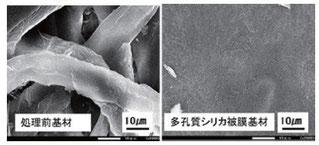 ▲顕微鏡で拡大したセルロース繊維