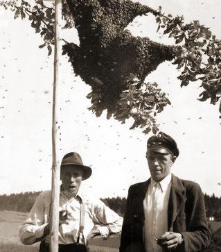 1959 Imker (Feichtner Sepp) und Briefträger (Schöfberger Johann)