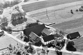 1963 Ertl Kimleinsdorf
