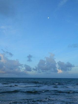 朝一まだ月が出ていました。風が吹き面ガタのコンディション。