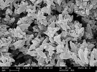 Mikroskopaufnahme präzipiertes Calciumcarbonat (PCC)