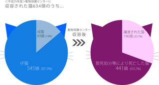平成25年度神奈川県動物保護センターに収容された猫の数