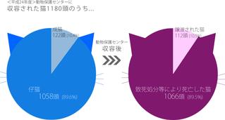 平成24年度神奈川県動物保護センターに収容された猫の数