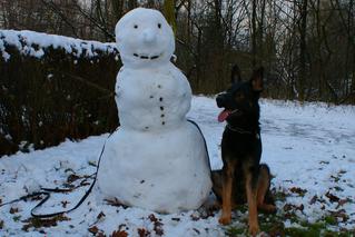 Ares mit Schneemann (Grundstellung)