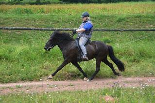 Maney vom Hofgut Retzenhöhe, Jahrgang 2010, V: Hjalmar frá Vatnsleysu