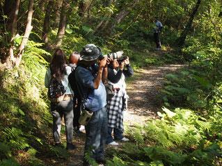講師と一緒に名護岳で写真を撮影する参加者のみなさん