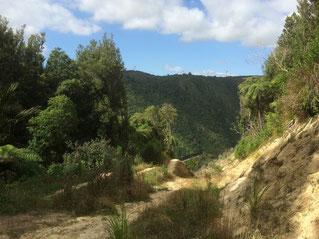 Rando dans le Manawatü Gorge
