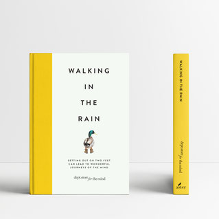 Boek: Walking in the Rain.