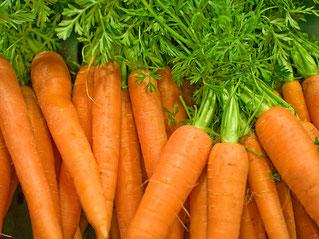 rohe Karotten weniger gesund als gekochte