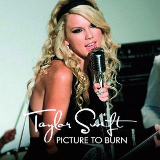 Picture to Burn (Big Machine Records, 2008)