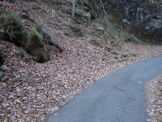 林道脇に積もる落葉