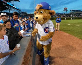 Clark, la mascotte dei Chicago Cubs